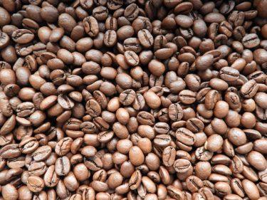 【Kuumuus Coffee Roasters】こだわりのコーヒー豆でおうち時間を楽しもう