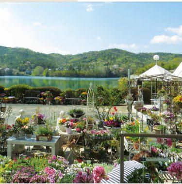 【Lake Side Garden & Cafe】通常営業再開&テイクアウトサービスも継続中。