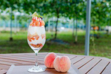 【きよとうカフェ】果樹園で採れた旬の桃を使った、様々なスイーツが人気!