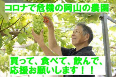 【スコレー】岡山市のコロナ危機に直面した岡山の農家さんがクラウドファンディング実施中です。