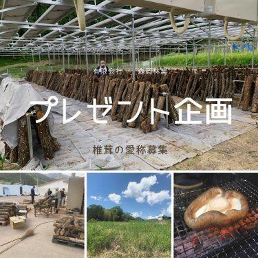 【有限会社 森岡林業】原木椎茸の愛称を大募集!採用された方には、美味しいプレゼント♪