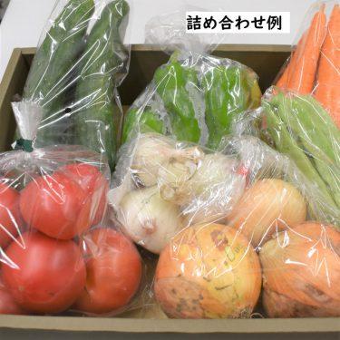 【道の駅  奥津温泉】新鮮な野菜をお届け!地元の味が楽しめる「野菜の詰め合わせセット」をオンライン販売中